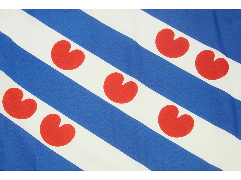2017 fashion items - Vlag Friesland 90x150cm